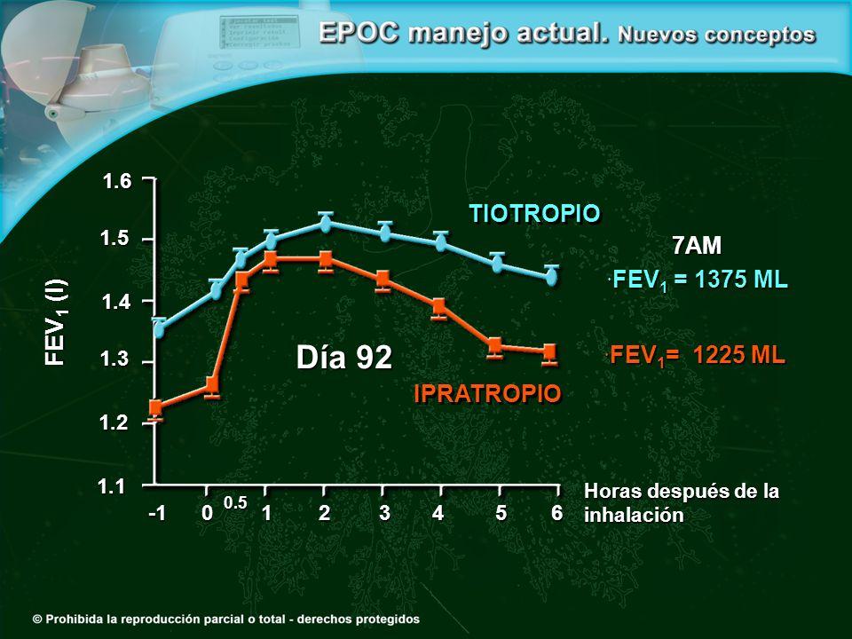 Día 92 0 0.5 1234 1.2 1.3 1.4 1.5 1.6 1.156 Horas después de la inhalación FEV 1 (l) 7AM FEV 1 = 1375 ML FEV 1 = 1375 ML FEV 1 = 1225 ML FEV 1 = 1225 ML TIOTROPIO IPRATROPIO