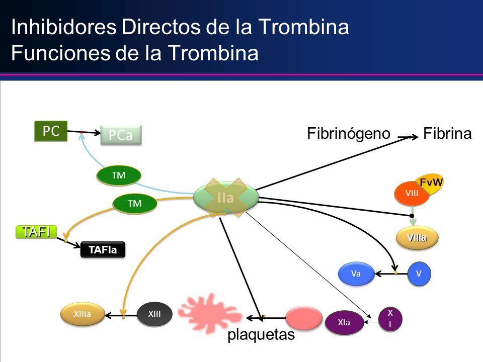Inhibidores Directos de la Trombina Funciones de la Trombina IIa Fibrinógeno Fibrina VIII FvW VIIIaVIIIa V Va plaquetas TAFI TAFIa XIII XIIIa TM PC PC