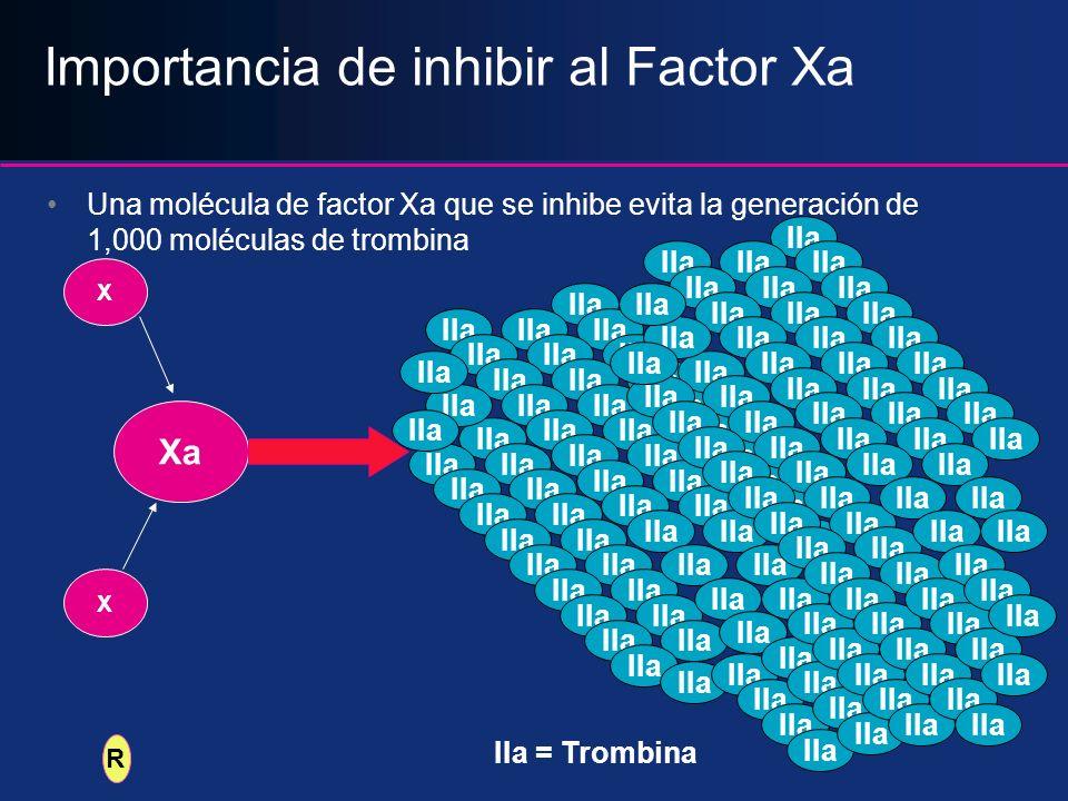 Importancia de inhibir al Factor Xa Una molécula de factor Xa que se inhibe evita la generación de 1,000 moléculas de trombina Xa IIa IIa = Trombina X