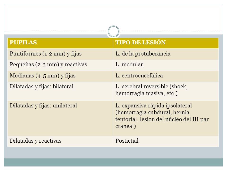 PUPILASTIPO DE LESIÓN Puntiformes (1-2 mm) y fijasL. de la protuberancia Pequeñas (2-3 mm) y reactivasL. medular Medianas (4-5 mm) y fijasL. centroenc