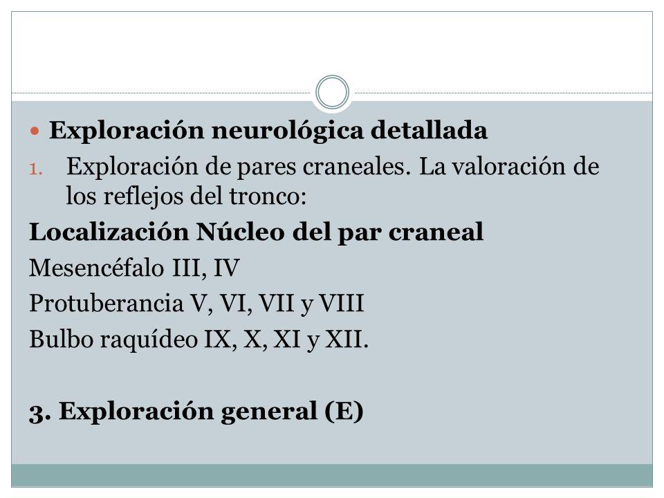 Exploración neurológica detallada 1. Exploración de pares craneales. La valoración de los reflejos del tronco: Localización Núcleo del par craneal Mes