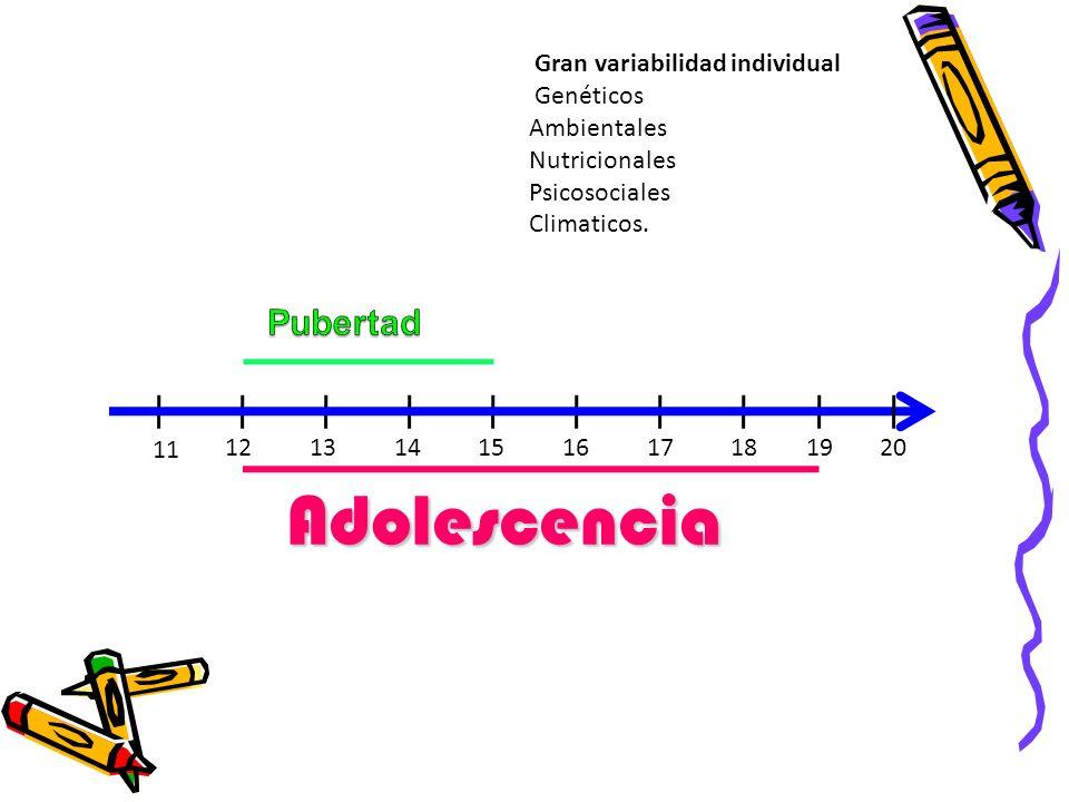 Adolescencia 20 11 Gran variabilidad individual Genéticos Ambientales Nutricionales Psicosociales Climaticos. 13 1214 1517161819