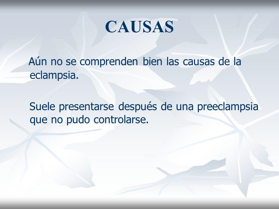 CAUSAS Aún no se comprenden bien las causas de la eclampsia. Suele presentarse después de una preeclampsia que no pudo controlarse.
