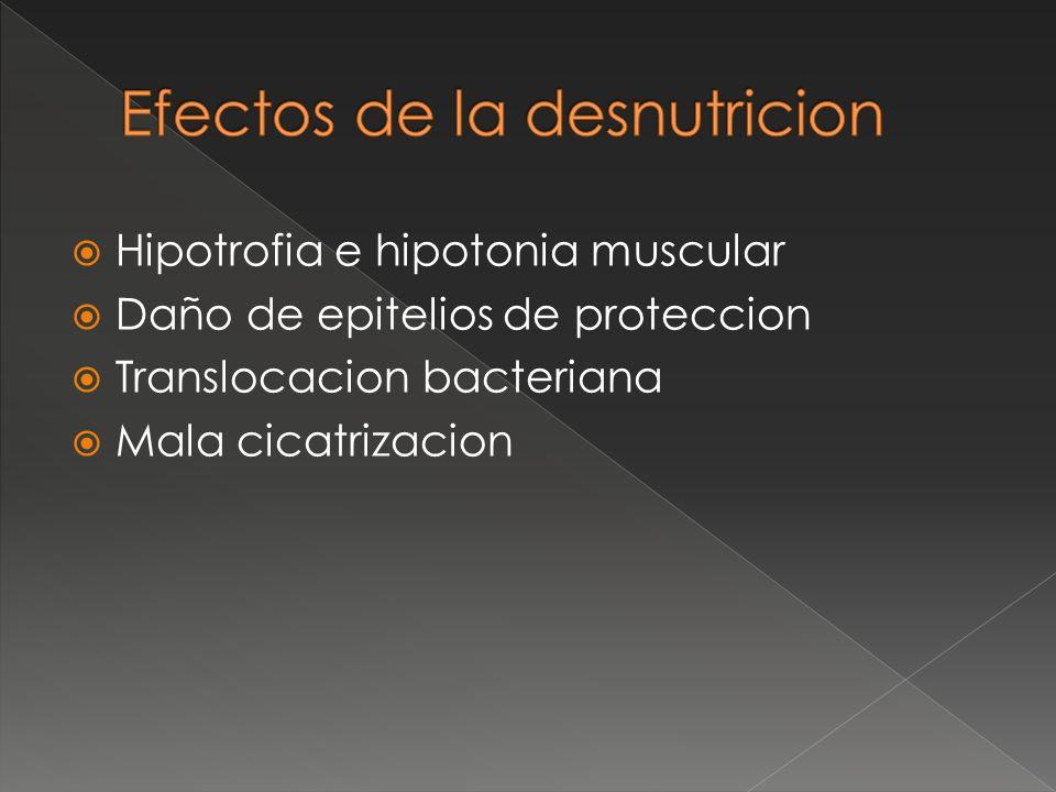 Hipotrofia e hipotonia muscular Daño de epitelios de proteccion Translocacion bacteriana Mala cicatrizacion