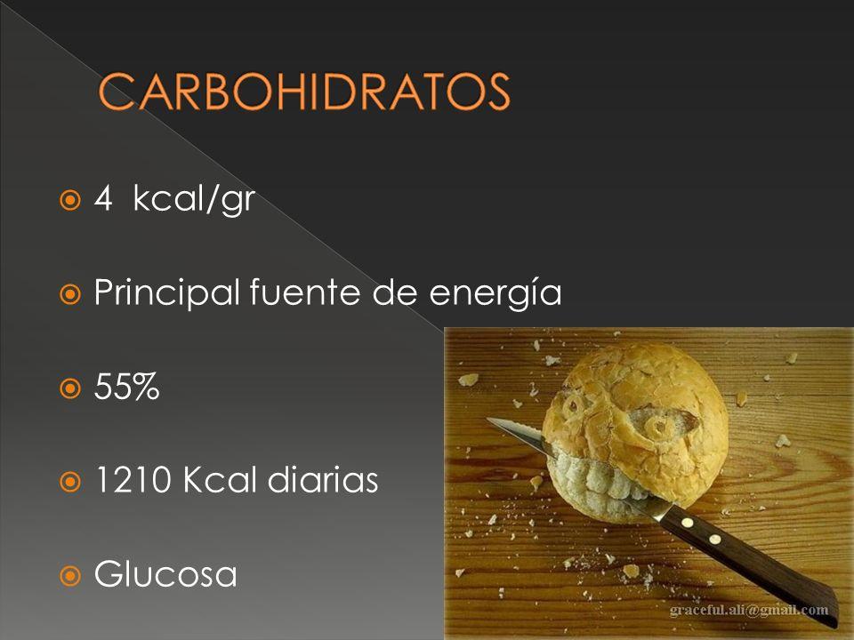 4 kcal/gr Principal fuente de energía 55% 1210 Kcal diarias Glucosa