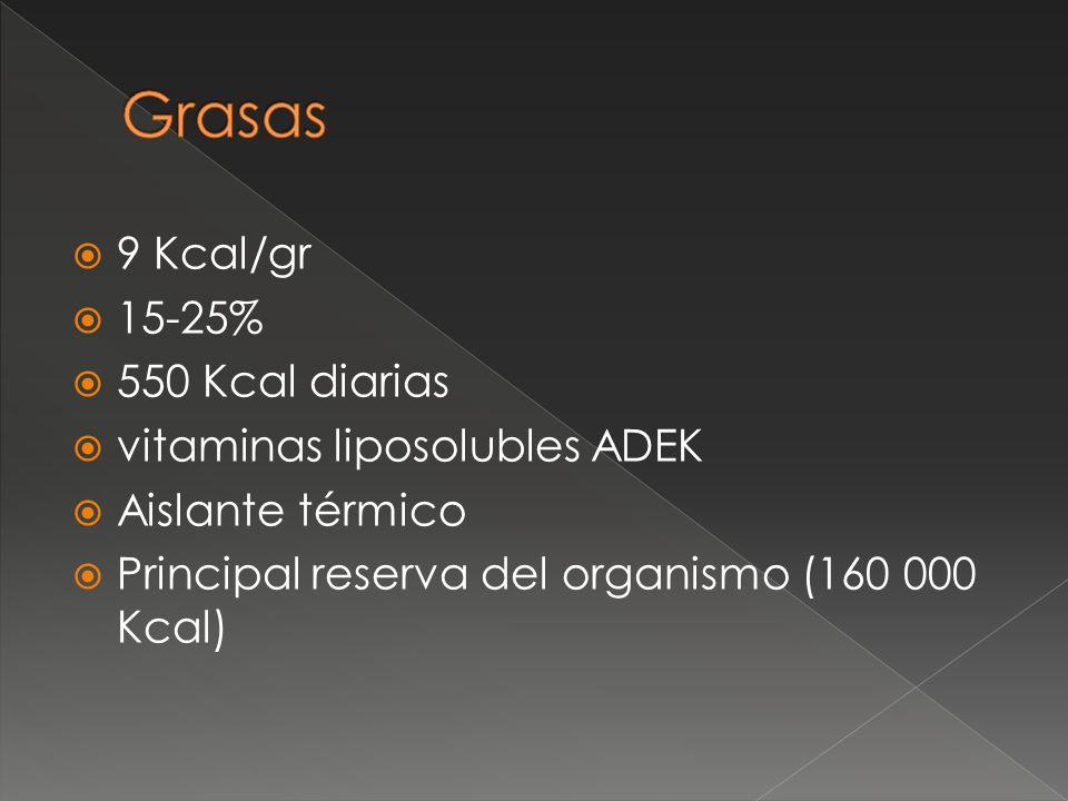 9 Kcal/gr 15-25% 550 Kcal diarias vitaminas liposolubles ADEK Aislante térmico Principal reserva del organismo (160 000 Kcal)