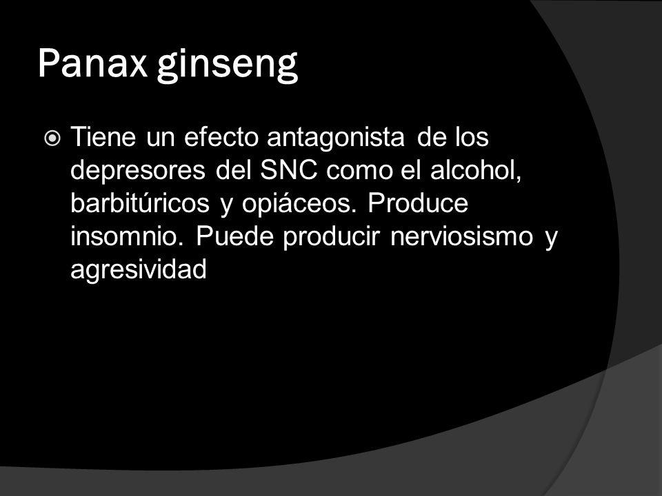 Panax ginseng Tiene un efecto antagonista de los depresores del SNC como el alcohol, barbitúricos y opiáceos. Produce insomnio. Puede producir nervios