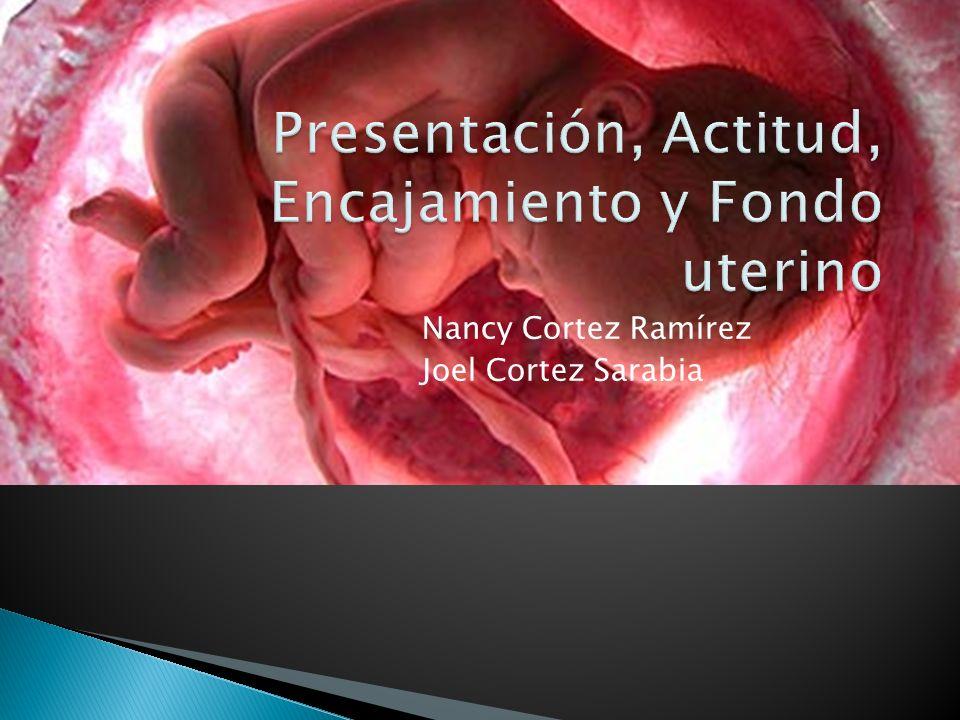 Describen la manera en que el feto se ubica para atravesar la vía del parto durante el nacimiento