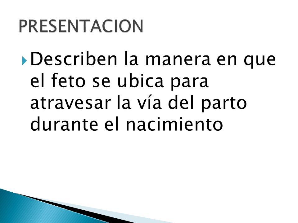 PRESENTACION CEFALICA.PRESENTACION DE NALGAS. PRESENTACION DE HOMBROS.
