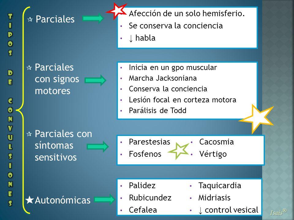 Parciales Isais ® Parciales con signos motores Parciales con síntomas sensitivos Autonómicas Afección de un solo hemisferio. Se conserva la conciencia