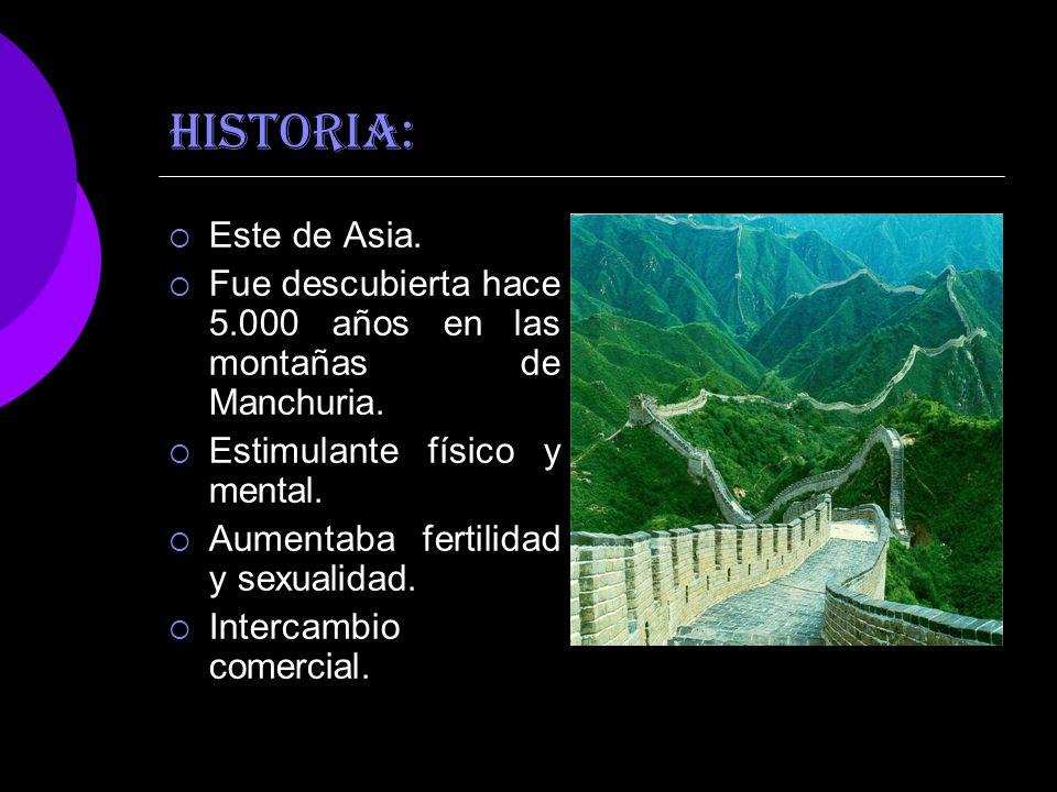 HISTORIA: Este de Asia. Fue descubierta hace 5.000 años en las montañas de Manchuria. Estimulante físico y mental. Aumentaba fertilidad y sexualidad.