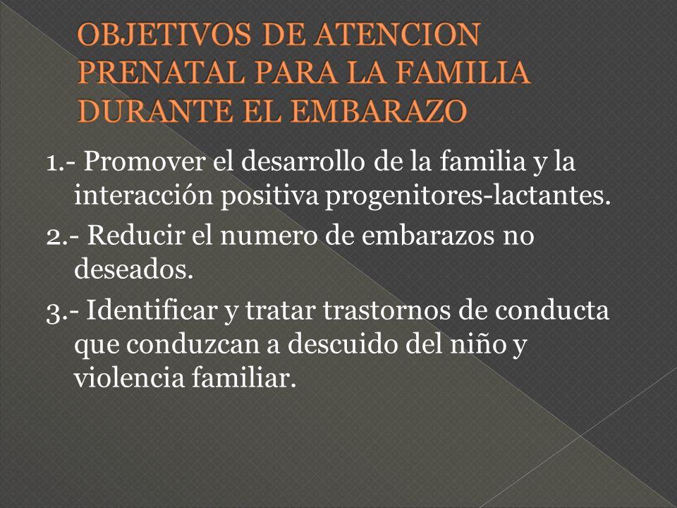 1.- Promover el desarrollo de la familia y la interacción positiva progenitores-lactantes. 2.- Reducir el numero de embarazos no deseados. 3.- Identif