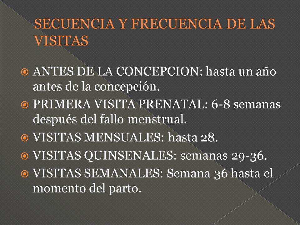 ANTES DE LA CONCEPCION: hasta un año antes de la concepción. PRIMERA VISITA PRENATAL: 6-8 semanas después del fallo menstrual. VISITAS MENSUALES: hast