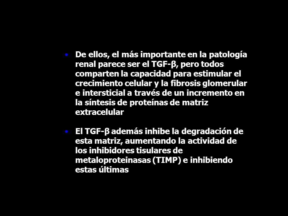 De ellos, el más importante en la patología renal parece ser el TGF-β, pero todos comparten la capacidad para estimular el crecimiento celular y la fi