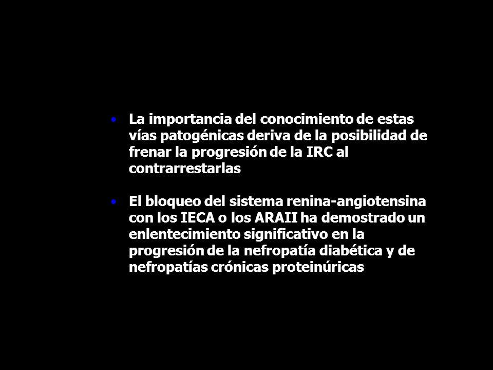 La importancia del conocimiento de estas vías patogénicas deriva de la posibilidad de frenar la progresión de la IRC al contrarrestarlas El bloqueo de