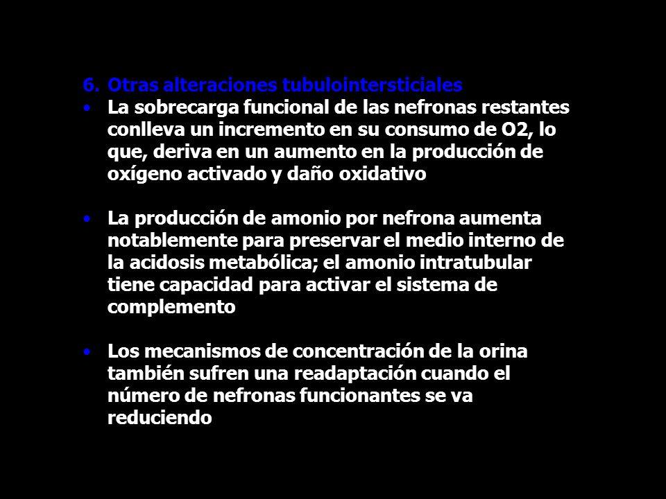 6.Otras alteraciones tubulointersticiales La sobrecarga funcional de las nefronas restantes conlleva un incremento en su consumo de O2, lo que, deriva