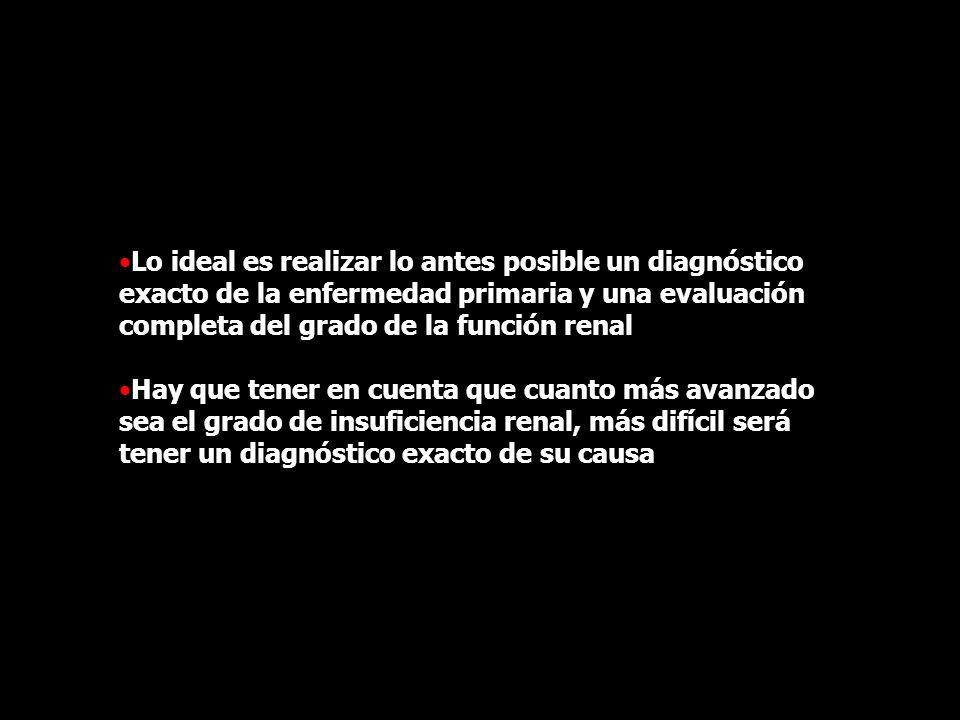 Lo ideal es realizar lo antes posible un diagnóstico exacto de la enfermedad primaria y una evaluación completa del grado de la función renal Hay que