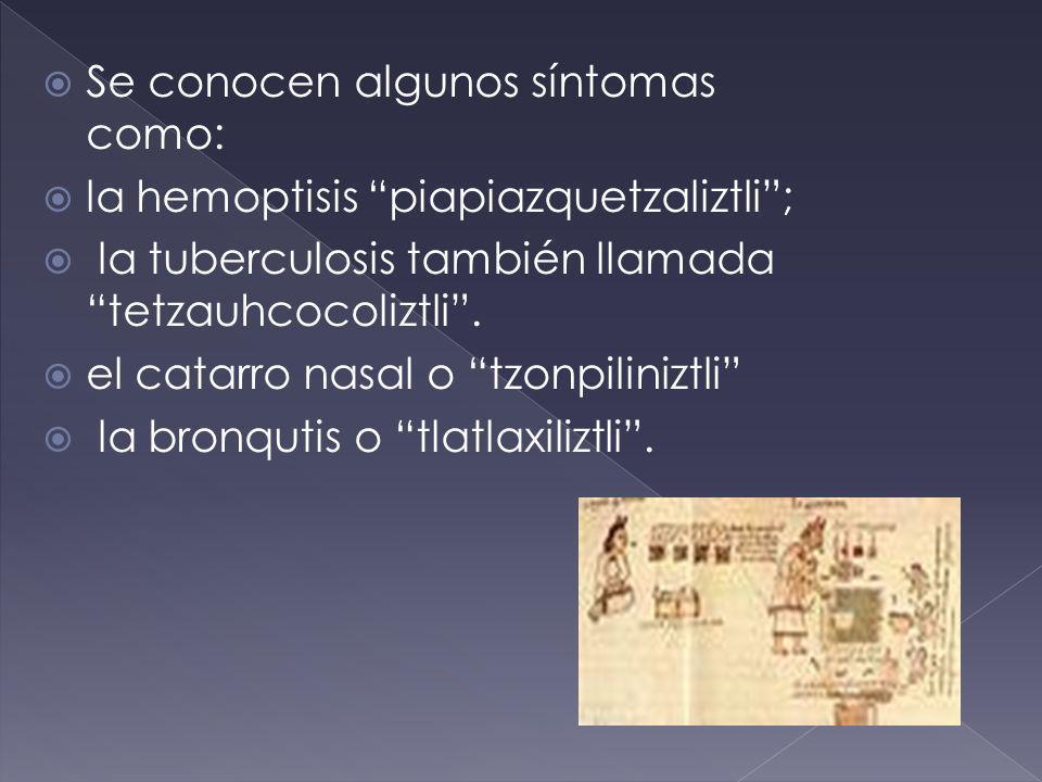 Se conocen algunos síntomas como: la hemoptisis piapiazquetzaliztli; la tuberculosis también llamada tetzauhcocoliztli. el catarro nasal o tzonpiliniz