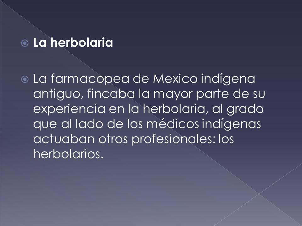 La herbolaria La farmacopea de Mexico indígena antiguo, fincaba la mayor parte de su experiencia en la herbolaria, al grado que al lado de los médicos