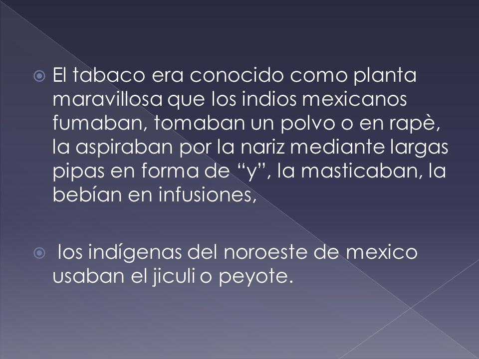El tabaco era conocido como planta maravillosa que los indios mexicanos fumaban, tomaban un polvo o en rapè, la aspiraban por la nariz mediante largas