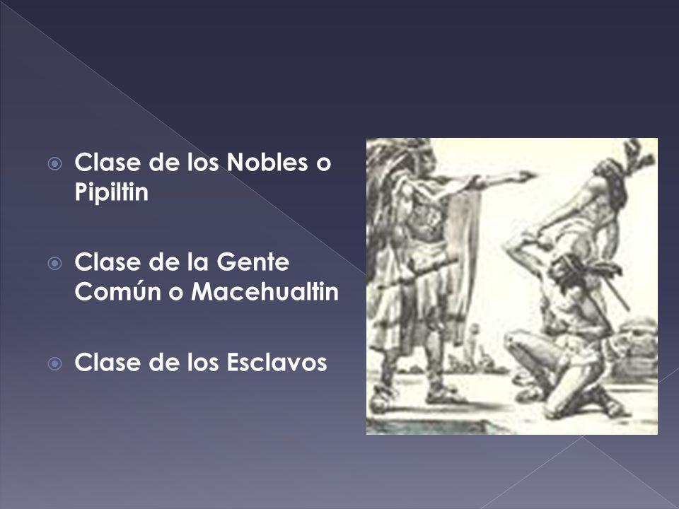 Clase de los Nobles o Pipiltin Clase de la Gente Común o Macehualtin Clase de los Esclavos
