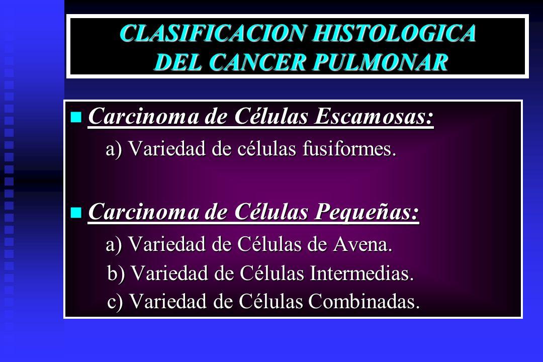 CLASIFICACION HISTOLOGICA DEL CANCER PULMONAR Carcinoma de Células Escamosas: Carcinoma de Células Escamosas: a) Variedad de células fusiformes. a) Va