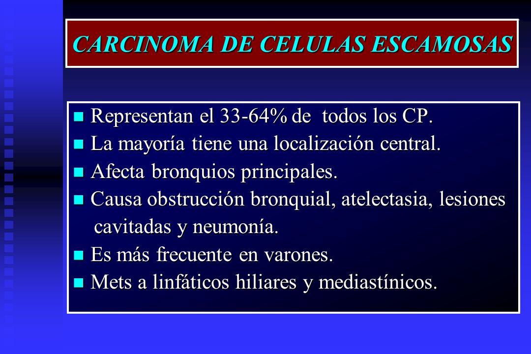 CARCINOMA DE CELULAS ESCAMOSAS Representan el 33-64% de todos los CP. Representan el 33-64% de todos los CP. La mayoría tiene una localización central
