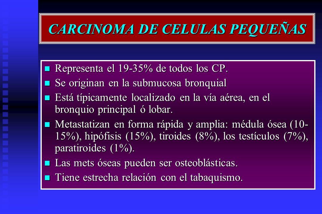 CARCINOMA DE CELULAS PEQUEÑAS Representa el 19-35% de todos los CP. Representa el 19-35% de todos los CP. Se originan en la submucosa bronquial Se ori