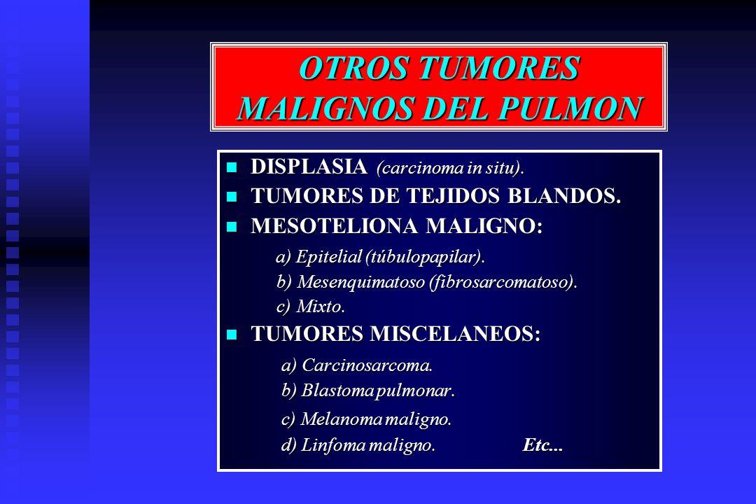 OTROS TUMORES MALIGNOS DEL PULMON DISPLASIA (carcinoma in situ). DISPLASIA (carcinoma in situ). TUMORES DE TEJIDOS BLANDOS. TUMORES DE TEJIDOS BLANDOS