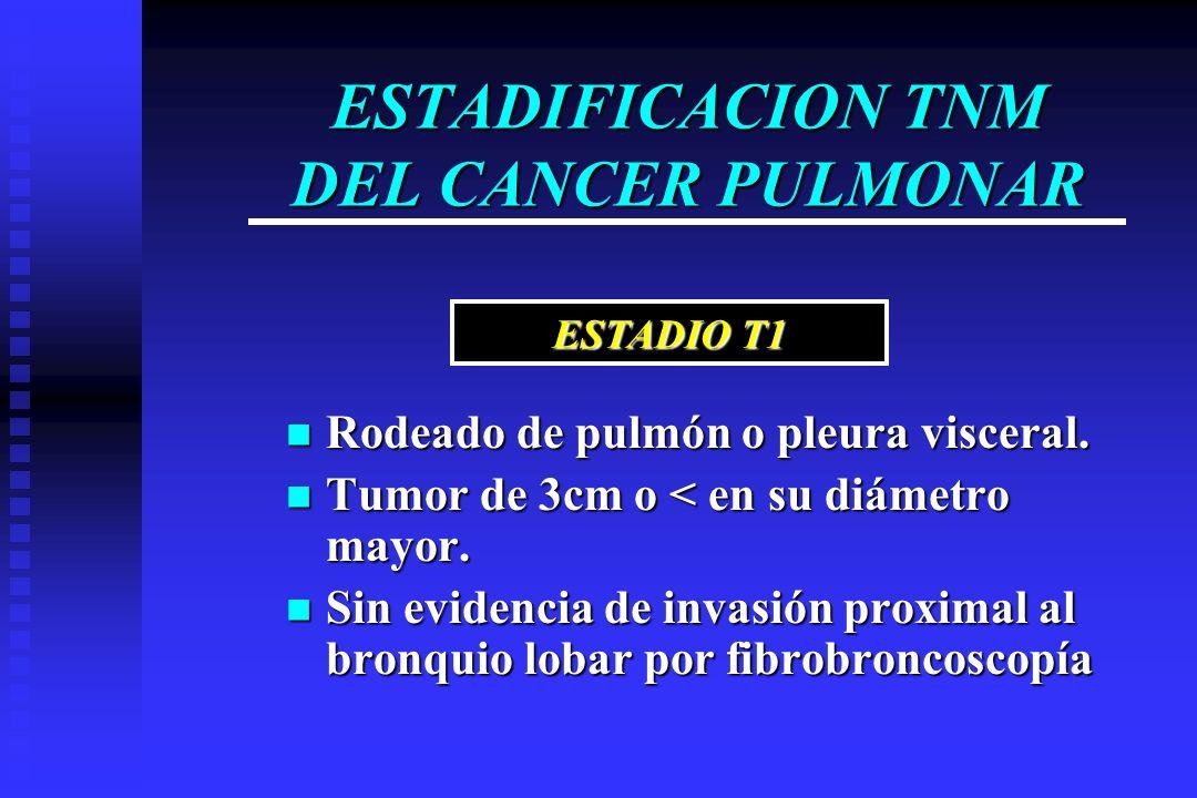 ESTADIFICACION TNM DEL CANCER PULMONAR Rodeado de pulmón o pleura visceral. Rodeado de pulmón o pleura visceral. Tumor de 3cm o < en su diámetro mayor
