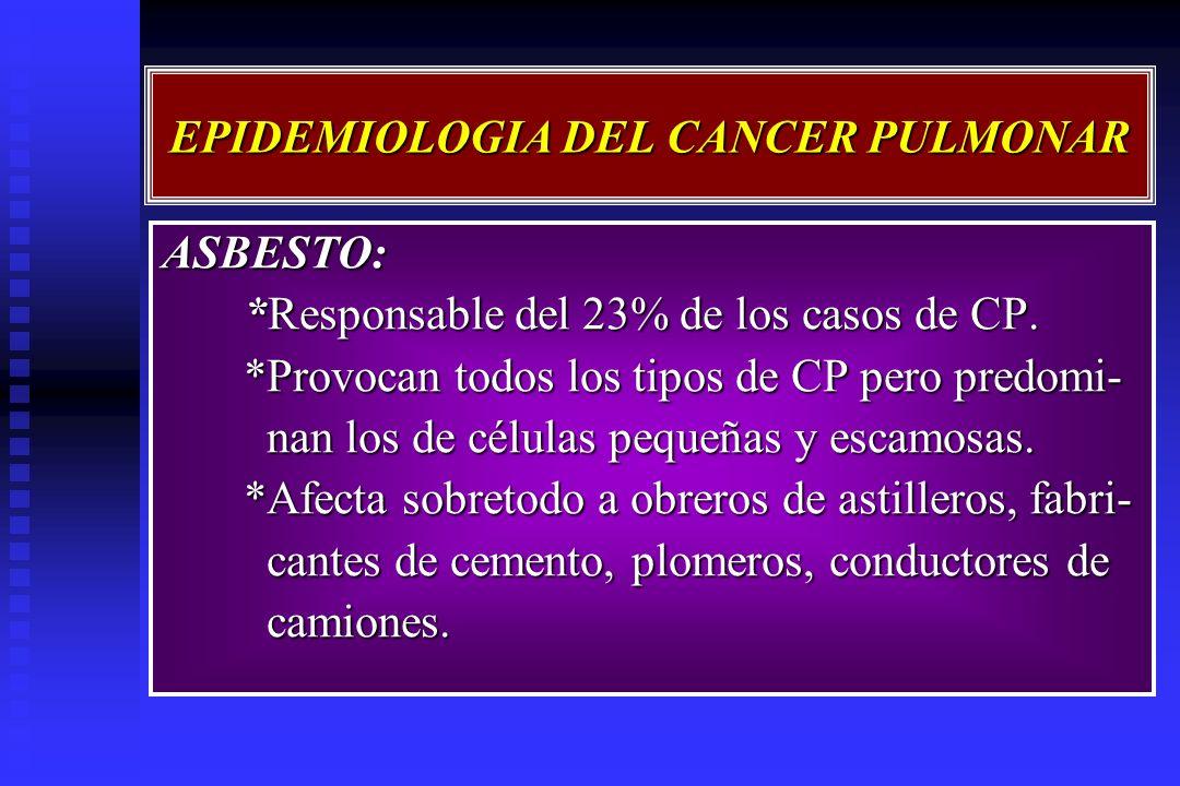 EPIDEMIOLOGIA DEL CANCER PULMONAR ASBESTO: *Responsable del 23% de los casos de CP. *Responsable del 23% de los casos de CP. *Provocan todos los tipos