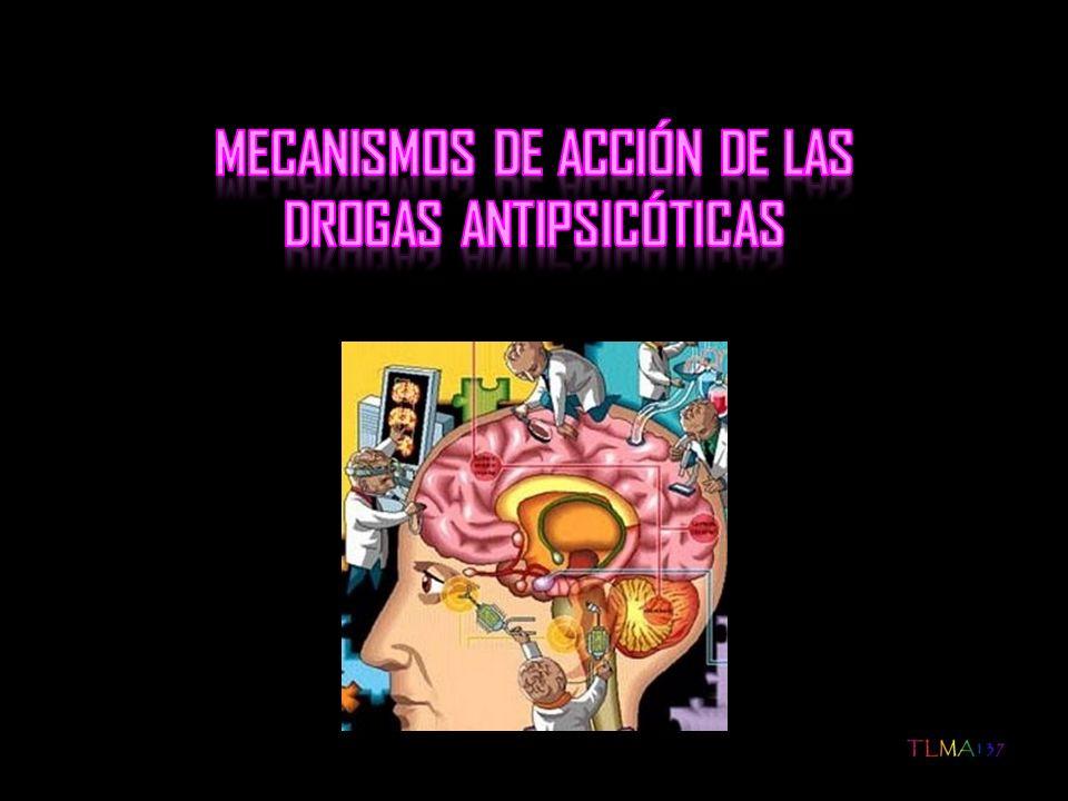 1.Hipótesis de la dopamina Explica las propiedades terapéuticas Postula que la esquizofrenia se debe a: Exceso de actividad de la dopamina Número aumentado de receptores dopamínicos hipersensibles en el cerebro Datos que la sustentan: Las drogas que aumentan la dopamina o son agonistas parciales de la misma, pueden inducir o agravar la psicosis