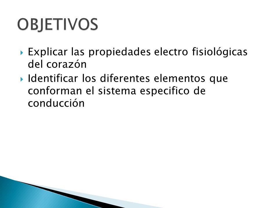 Explicar las propiedades electro fisiológicas del corazón Identificar los diferentes elementos que conforman el sistema especifico de conducción