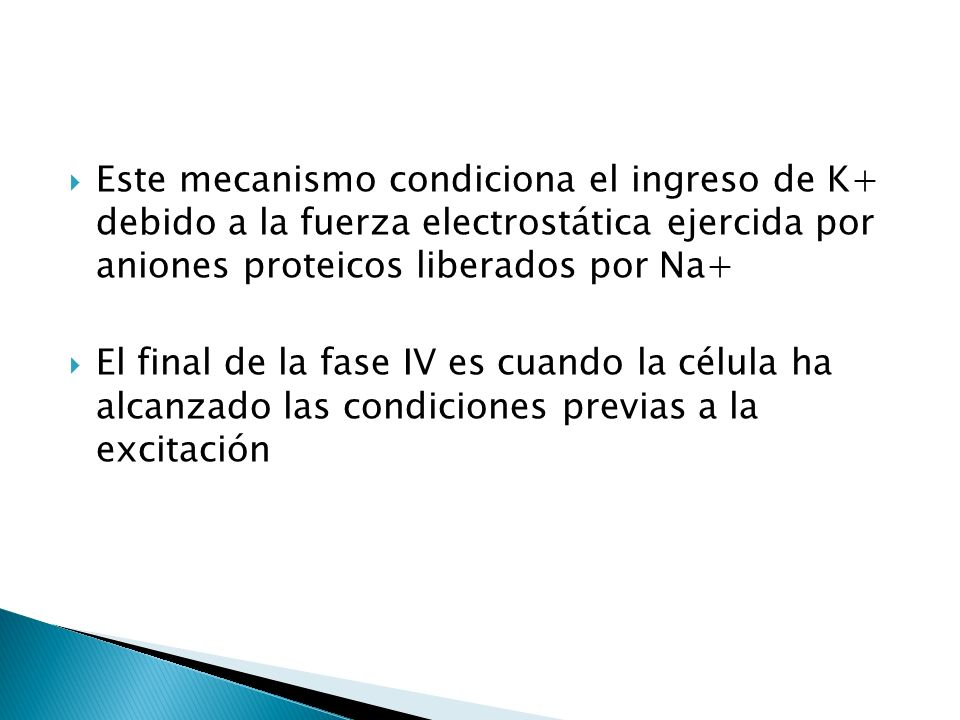 Este mecanismo condiciona el ingreso de K+ debido a la fuerza electrostática ejercida por aniones proteicos liberados por Na+ El final de la fase IV e