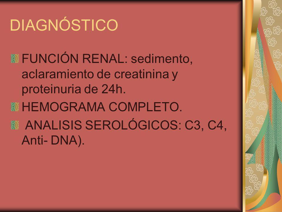 DIAGNÓSTICO FUNCIÓN RENAL: sedimento, aclaramiento de creatinina y proteinuria de 24h. HEMOGRAMA COMPLETO. ANALISIS SEROLÓGICOS: C3, C4, Anti- DNA).