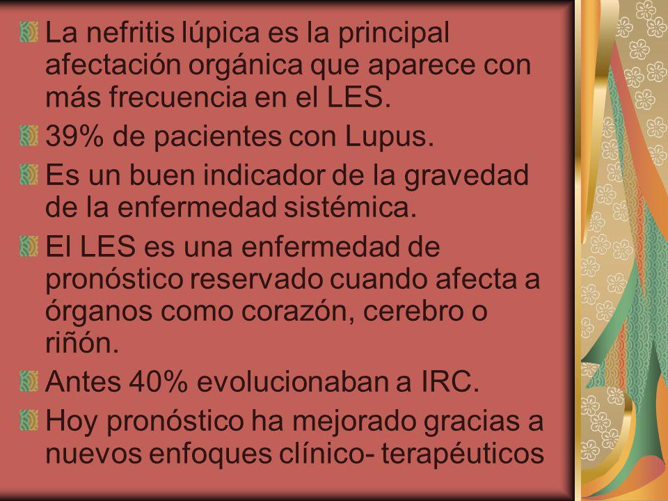 La nefritis lúpica es la principal afectación orgánica que aparece con más frecuencia en el LES. 39% de pacientes con Lupus. Es un buen indicador de l