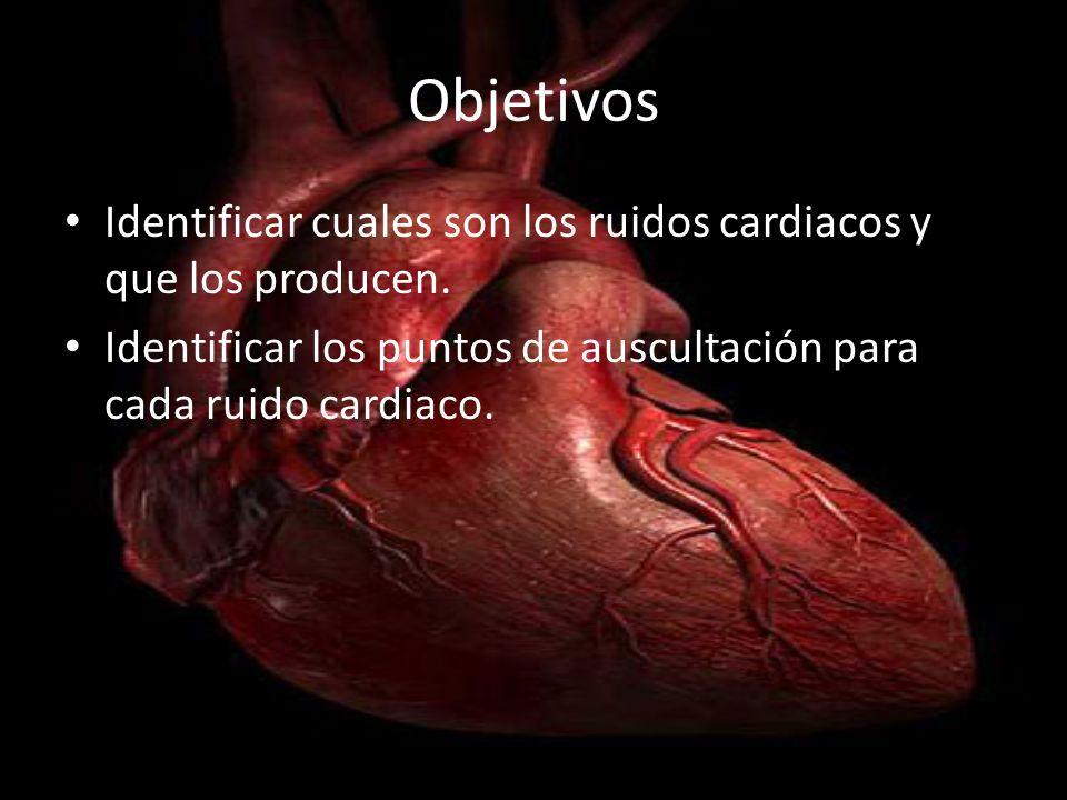 Objetivos Identificar cuales son los ruidos cardiacos y que los producen. Identificar los puntos de auscultación para cada ruido cardiaco.
