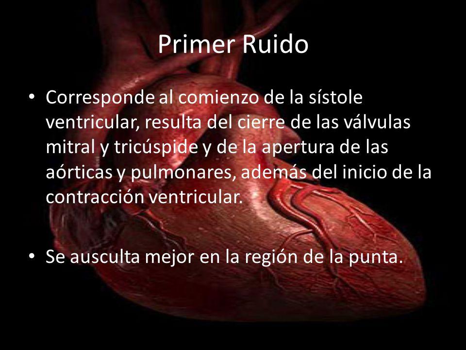 Segundo ruido Coincide con la diástole ventricular, es el resultado del cierre de las válvulas sigmoideas y de la apertura de las válvulas AV Se ausculta en el área pulmonar Normalmente se auscultan los dos componentes del II ruido (lla y llp)