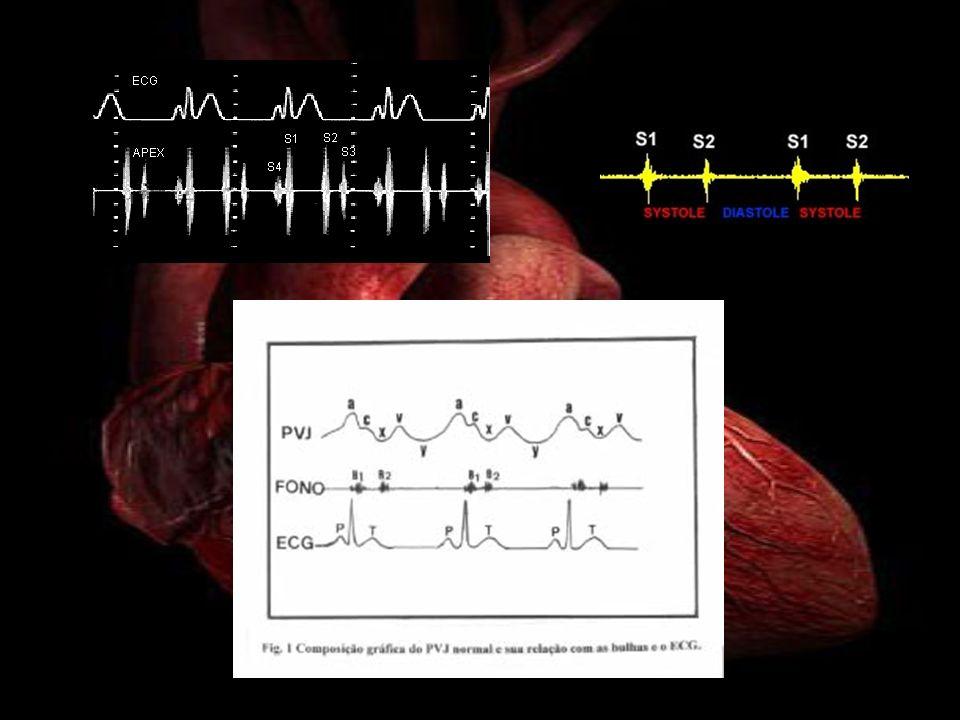 Focos de auscultación cardiaca C1-2: Que correspondería al Foco Aórtico Principal, ubicado en el 2do espacio intercostal derecho con el borde esternal.