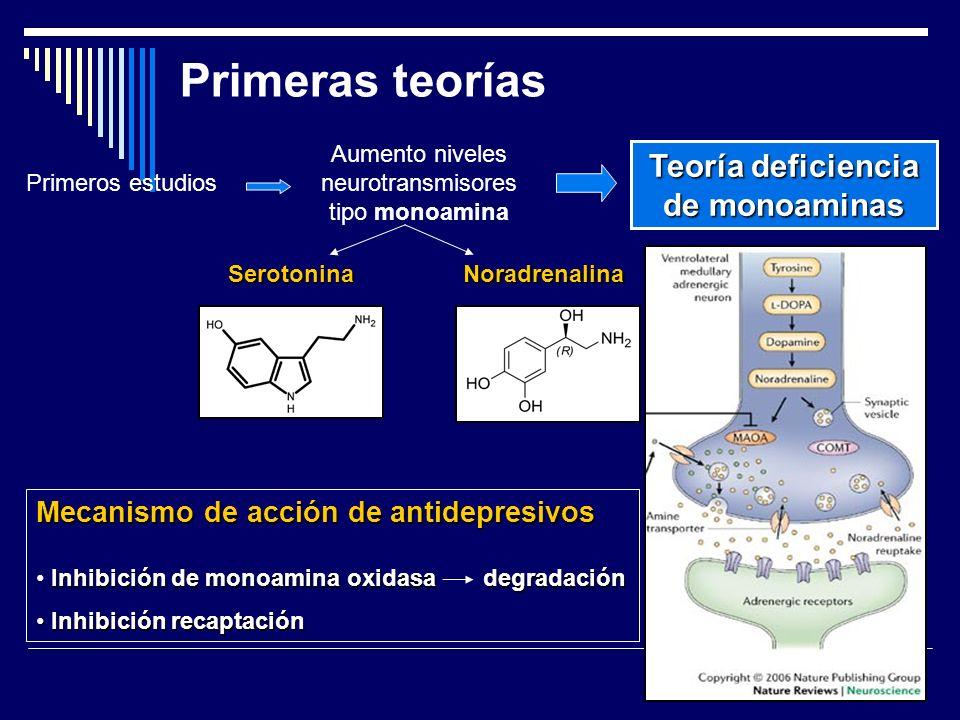 Primeras teorías Primeros estudios Aumento niveles neurotransmisores tipo monoamina Teoría deficiencia de monoaminas SerotoninaNoradrenalina Mecanismo de acción de antidepresivos Inhibición de monoamina oxidasa degradación Inhibición recaptación Inhibición recaptación
