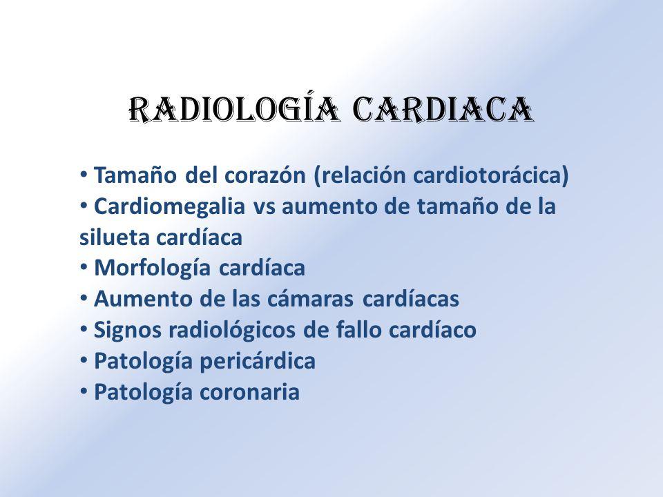 Tamaño del corazón (relación cardiotorácica) Cardiomegalia vs aumento de tamaño de la silueta cardíaca Morfología cardíaca Aumento de las cámaras card