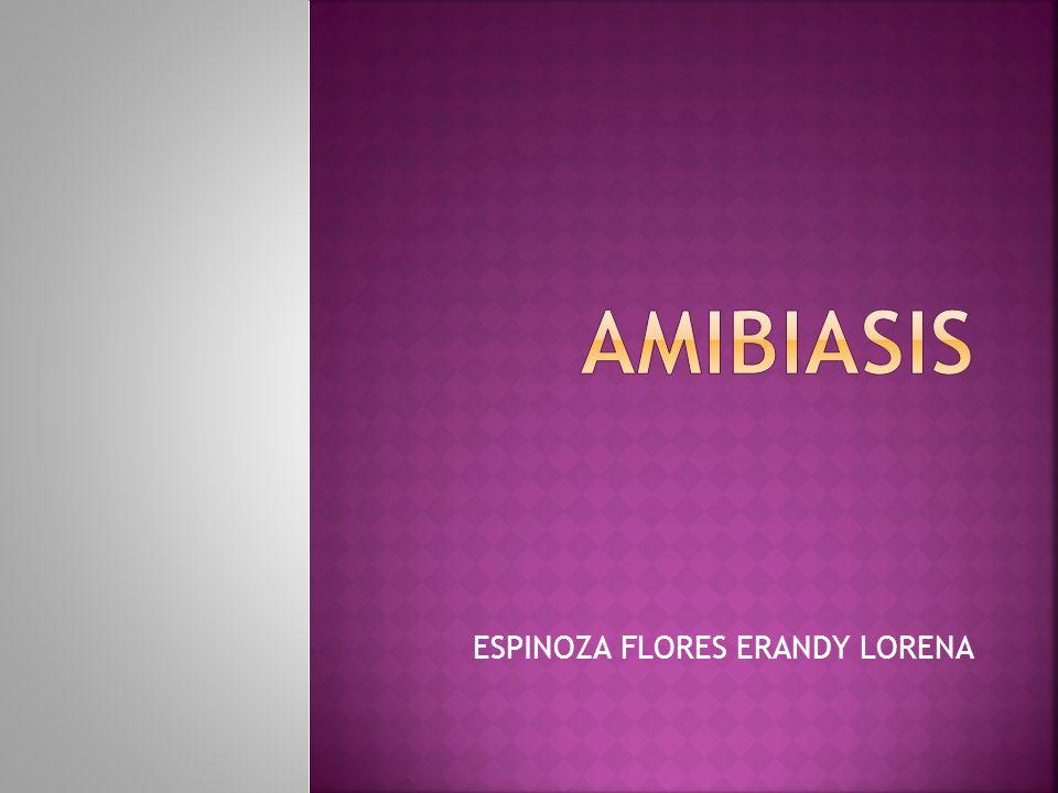 Producida por Entamoeba hystolitica.