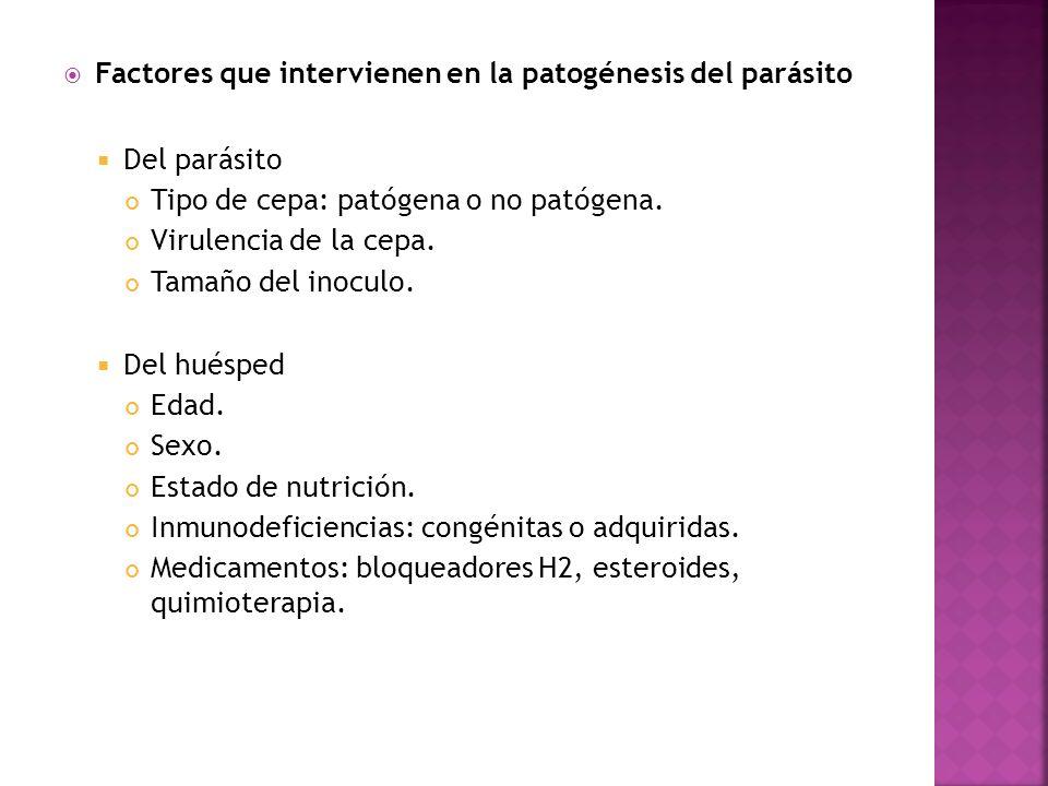Factores que intervienen en la patogénesis del parásito Del parásito Tipo de cepa: patógena o no patógena. Virulencia de la cepa. Tamaño del inoculo.