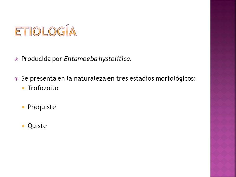 Producida por Entamoeba hystolitica. Se presenta en la naturaleza en tres estadios morfológicos: Trofozoito Prequiste Quiste