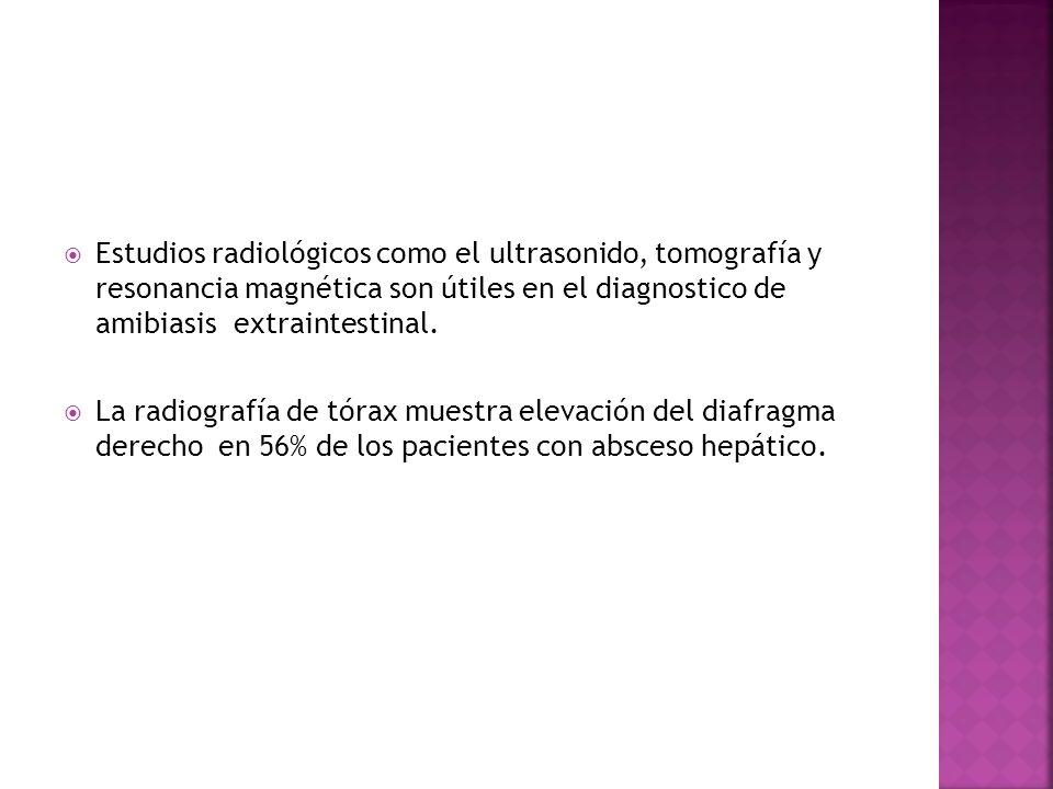 Estudios radiológicos como el ultrasonido, tomografía y resonancia magnética son útiles en el diagnostico de amibiasis extraintestinal. La radiografía