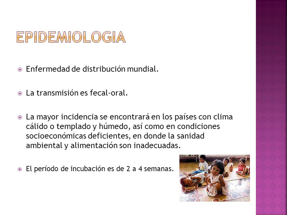 Enfermedad de distribución mundial. La transmisión es fecal-oral. La mayor incidencia se encontrará en los países con clima cálido o templado y húmedo