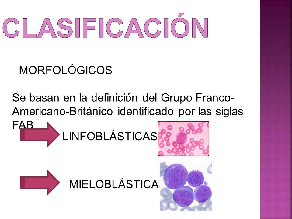 MORFOLÓGICOS Se basan en la definición del Grupo Franco- Americano-Británico identificado por las siglas FAB LINFOBLÁSTICAS MIELOBLÁSTICAS