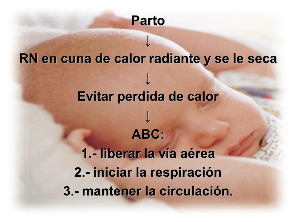 La frecuencia del masaje debe ser sincrónica con la ventilación para obtener 90 compresiones y 30 ventilaciones /min.La frecuencia del masaje debe ser sincrónica con la ventilación para obtener 90 compresiones y 30 ventilaciones /min.