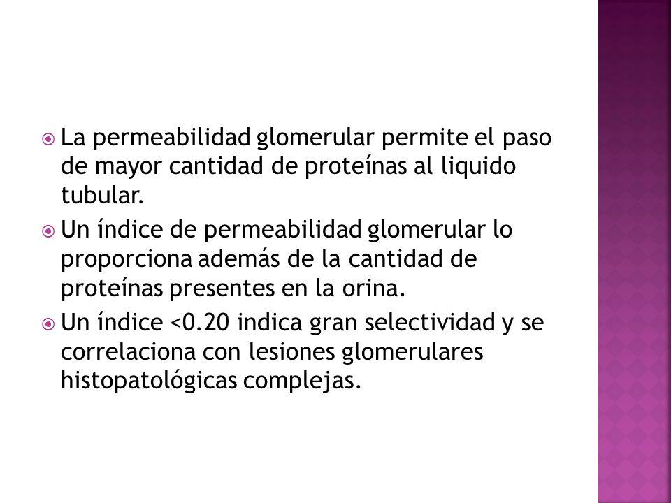 La permeabilidad glomerular permite el paso de mayor cantidad de proteínas al liquido tubular. Un índice de permeabilidad glomerular lo proporciona ad