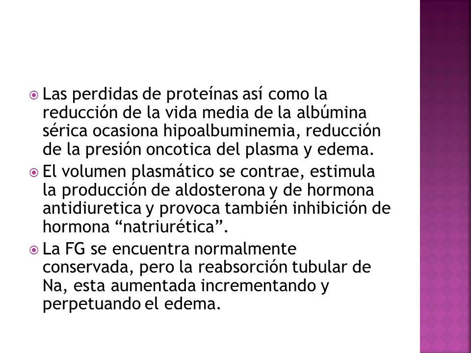 Las perdidas de proteínas así como la reducción de la vida media de la albúmina sérica ocasiona hipoalbuminemia, reducción de la presión oncotica del